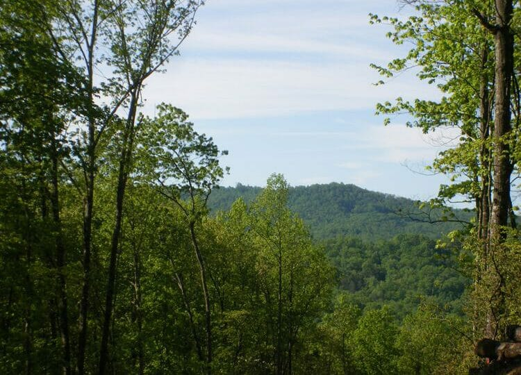 glen cannon real estate pisgah forest nc