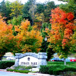 properties for sale in Straus Park