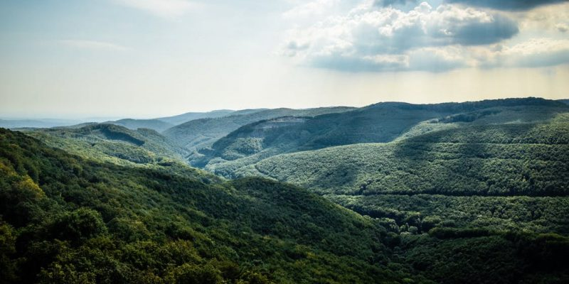 brevard nc national and state parks